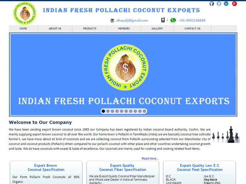 Indian Fresh Pollachi Coconut Exporters